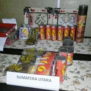 Produk terasi yang dipamerkan dalam ajang Pemuda Mandiri Perdesaan (PMP) tingkat nasional tahun 2016 di Bandung, Jawa Barat.